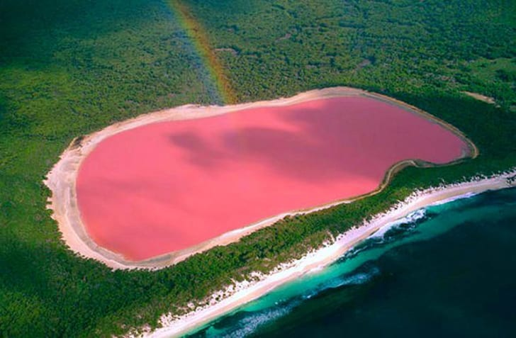 Pink Lake Hillier in Western Australia