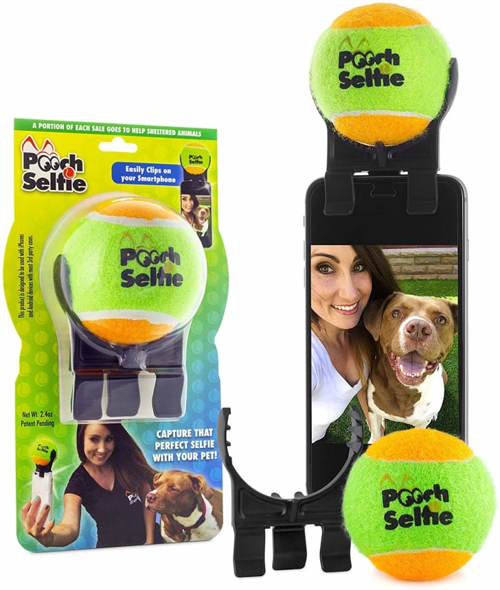 A device that allows you to take selfies with your dog