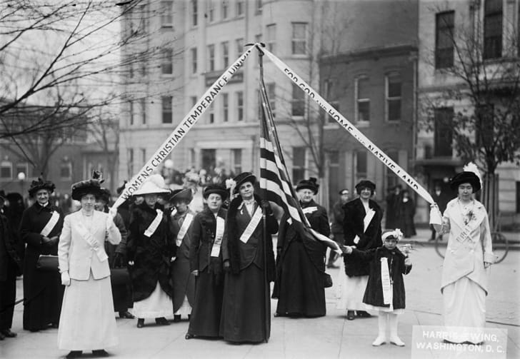 Members of the Women's Christian Temperance Union (WCTU) who marched on Washington DC to present a petition supporting prohibition.