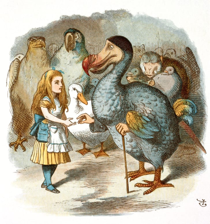 """The Dodo in """"Alice in Wonderland"""" is a caricature of Lewis Carroll."""