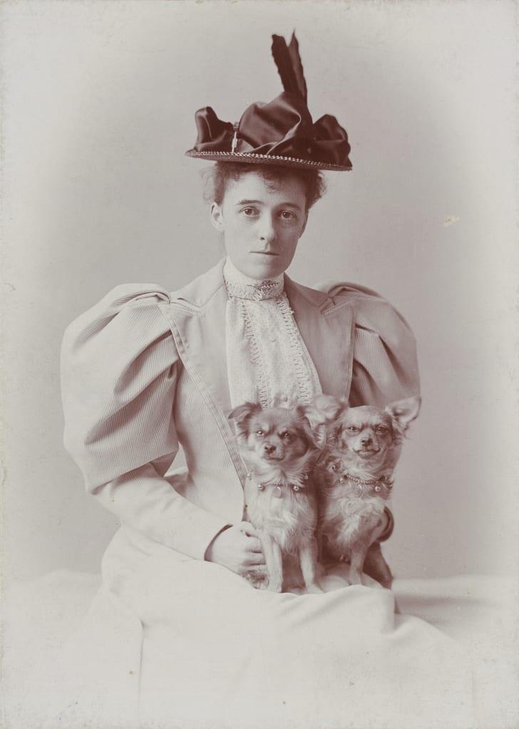 "Edith Wharton's nickname was ""Pussy Jones."""