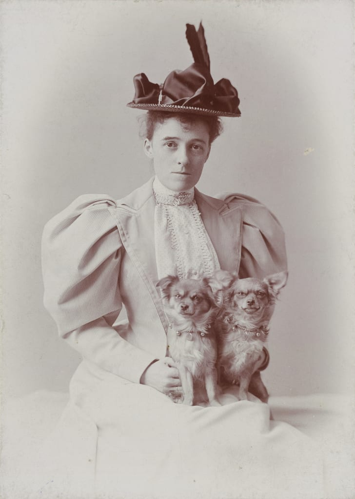 "Edith Wharton's nickname was ""Pussy Jones."""