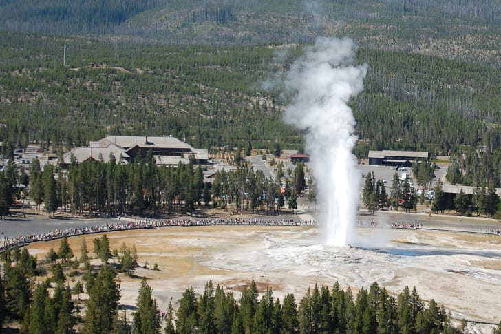 Old Faithful geyser in Yellowstone National Park