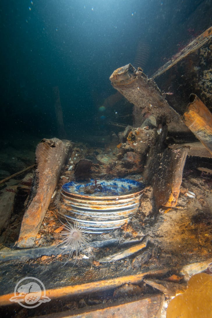 Dishes at HMS Erebus shipwreck