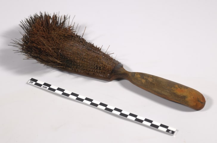 Hairbrush from HMS Erebus shipwreck
