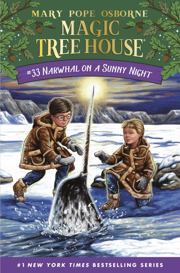 magic tree house narwhal on a sunny night