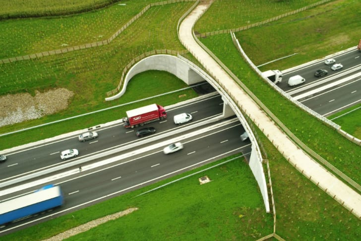 A556 'green bridge' in the UK