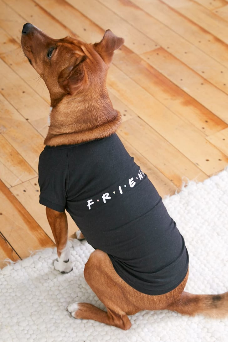 Friends dog shirt.