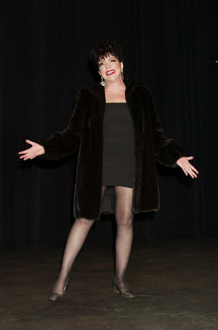 liza minnelli 2002