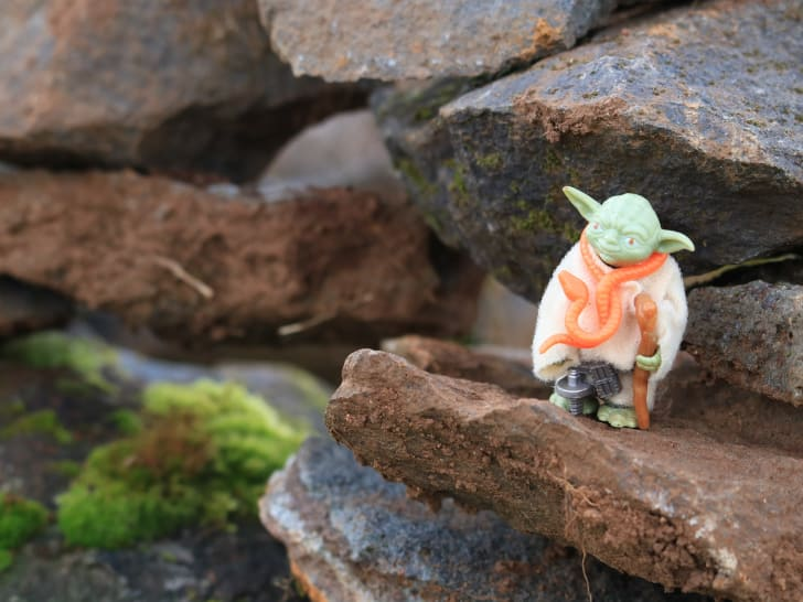 A Yoda toy stands on a rock
