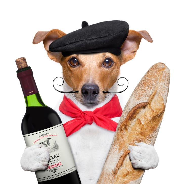 French dog with bread and wine.