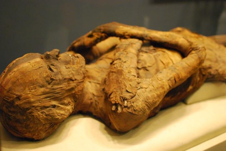 Human mummy