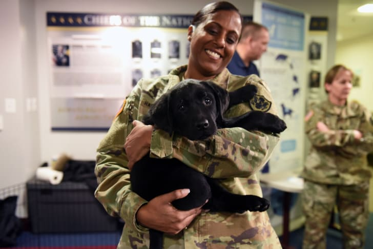 A woman in an army uniform holds a black puppy