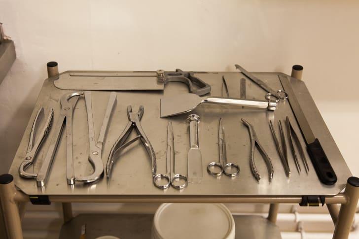 Autopsy tools.