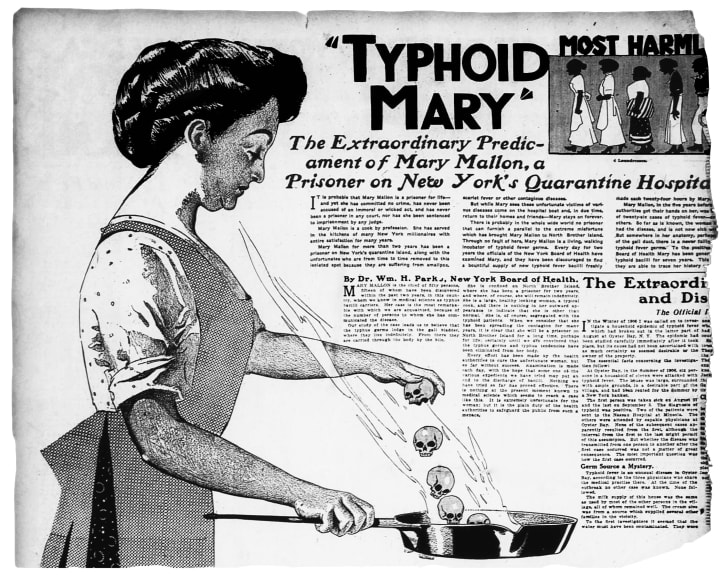 typhoid mary newspaper article from 1909