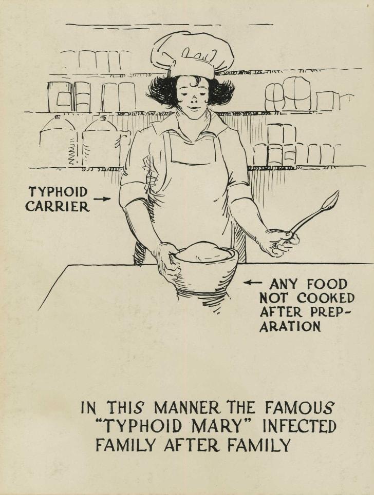typhoid mary cartoon