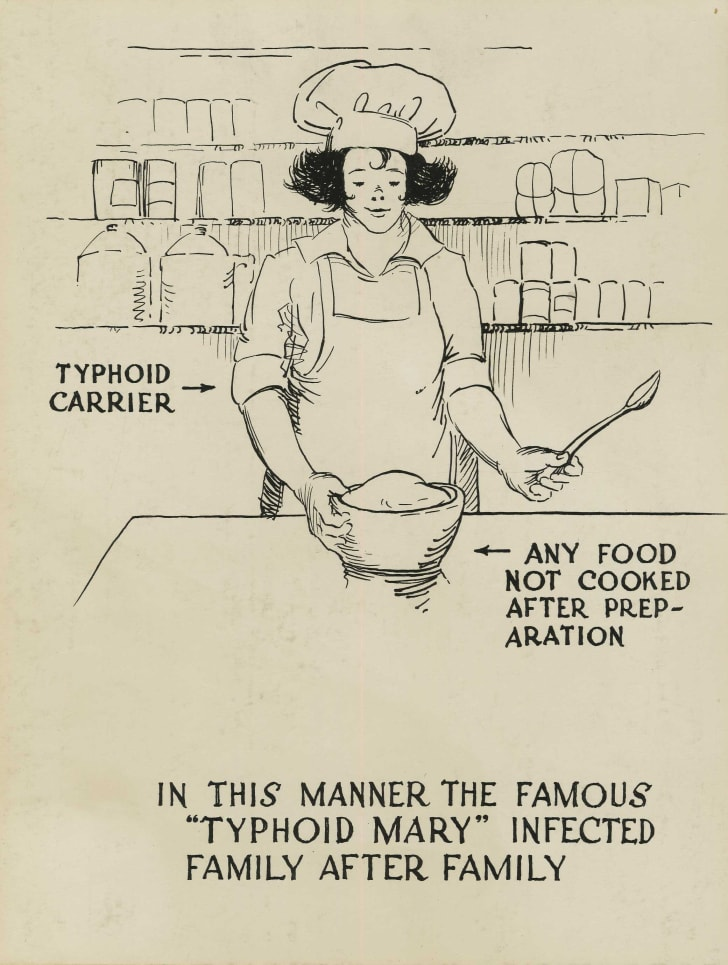 typhoid mary cartoon
