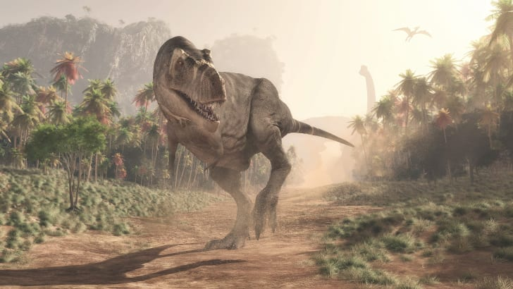 A T-rex running around, they probably had better vision then we thought.