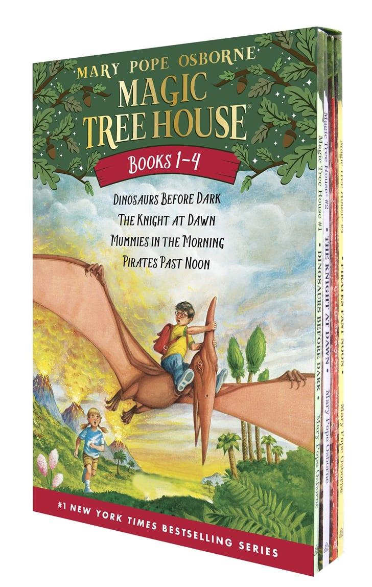 The Magic Treehouse books.