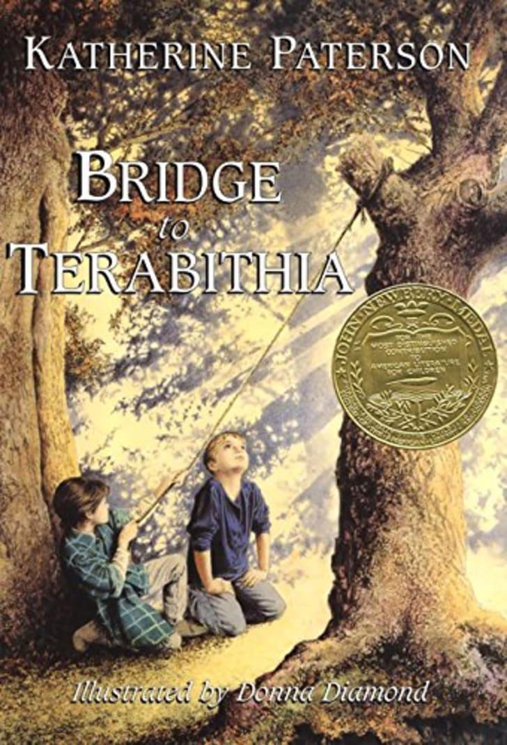 The Bridge of Terabithia book.