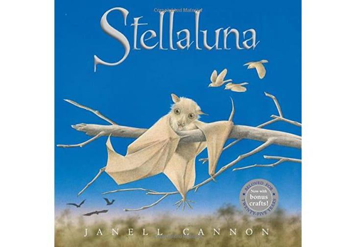 Stellaluna book sold on Amazon.