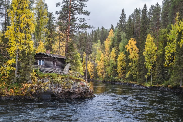 Small house by a forest stream