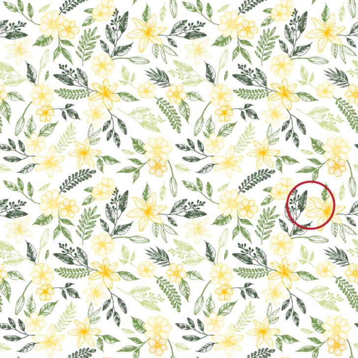 spot the egg in the flowers brain teaser answer