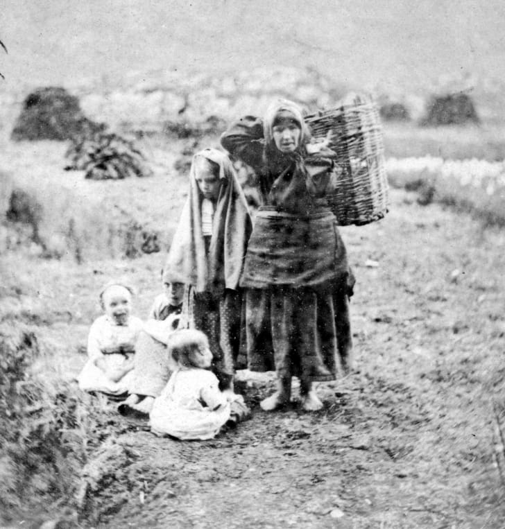 Collecting peat In the Killarney countryside, County Kerry, a barefooted mother carries a basket on her back while her young children sit at her feet