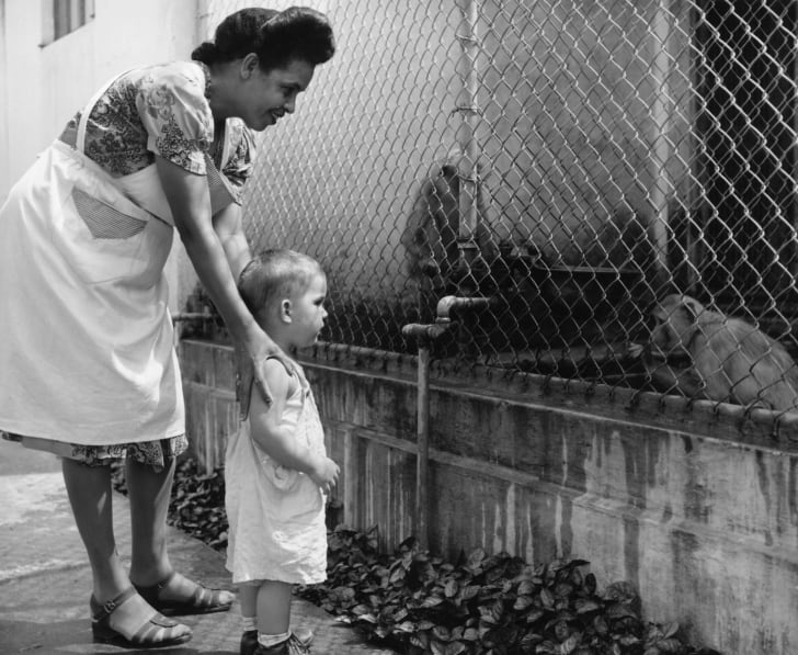 Mother and child looking at the monkey cage at a zoo in Puerto Rico