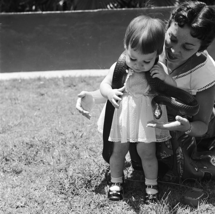 A baby girl and her mother play with a harmless Indigo snake at a serpentarium