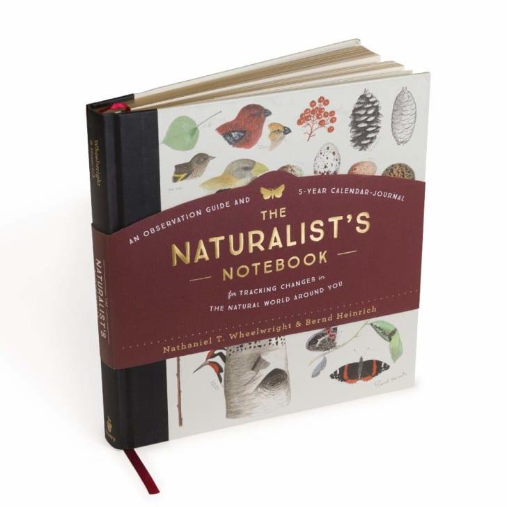 The Naturalist's Notebook on Amazon.