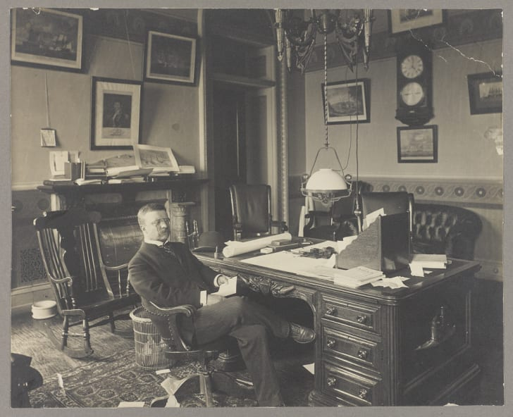 theodore roosevelt in office in 1905