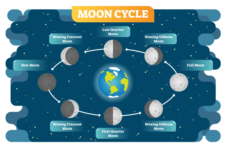 lunar orbit cycle illustration