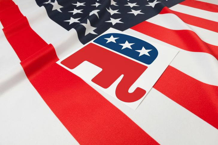 Elephant symbol for the Republican party.