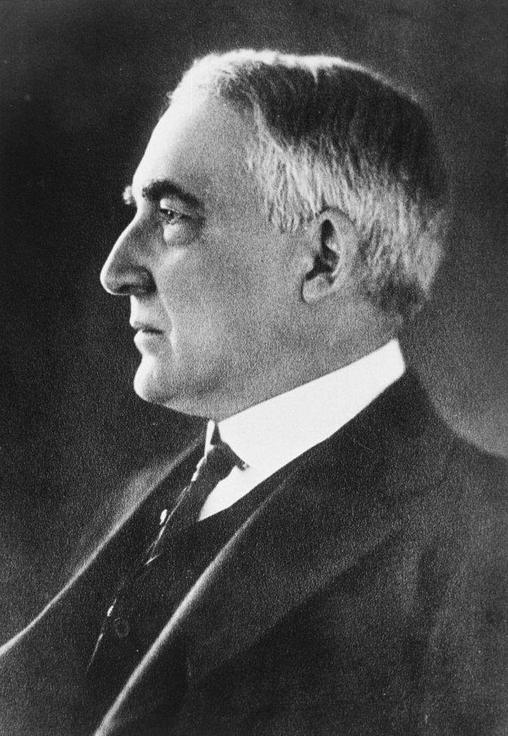 Portrait of Warren G. Harding