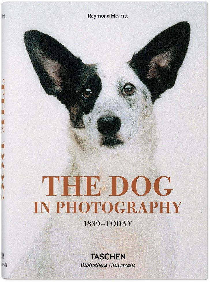 An image of the cover of the book The Dog in Photography.