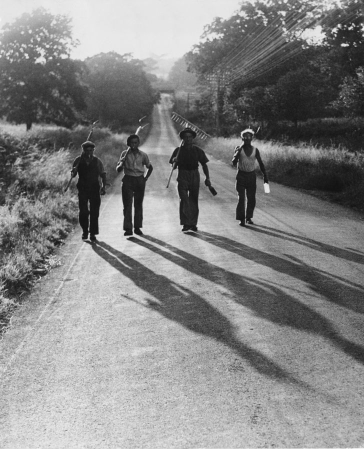 Farm laborers returning home at the end of a day, July 1947.