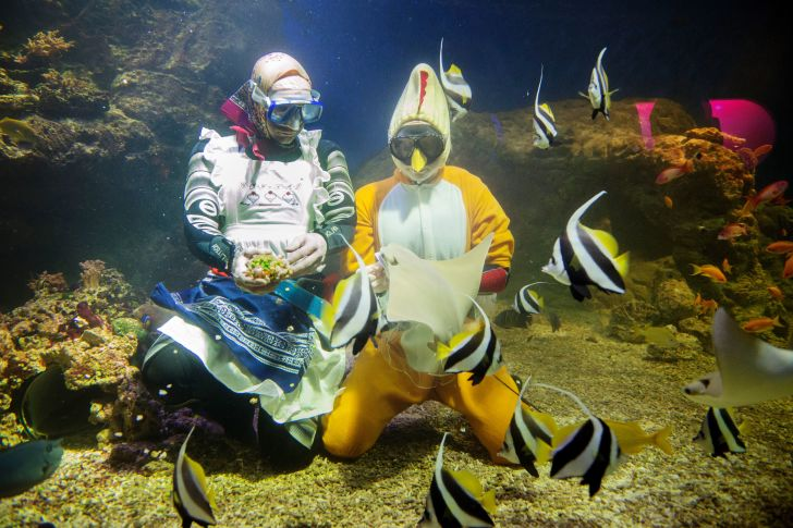 Two women feed candy to fish while dressed as Easter witches at the Aquaria Vattenmuseum in Stockholm, Sweden in 2016.