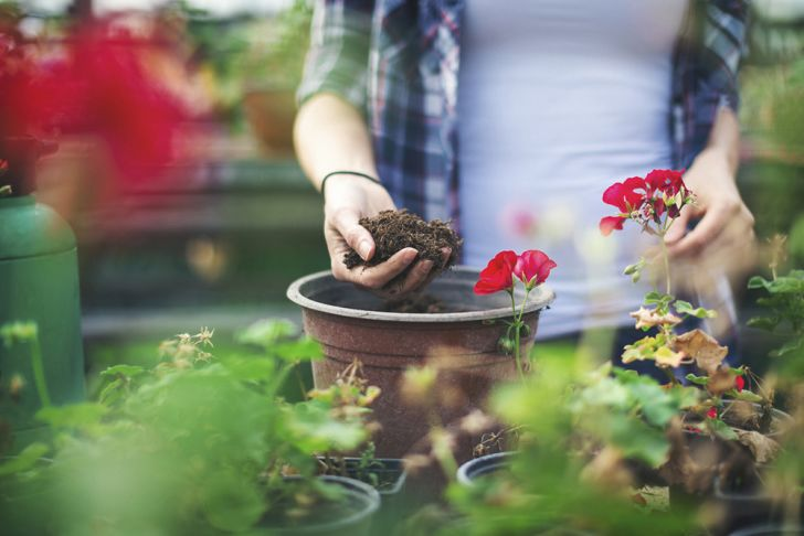 A woman in a garden holds potting soil in one hand.