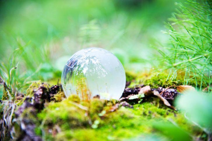 A translucent globe sits in a field
