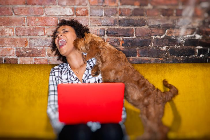 Woman working on her computer getting a kiss on the face from her dog.
