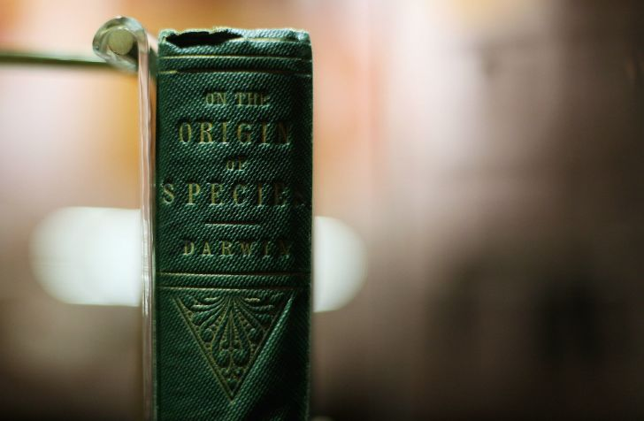 A copy of Charles Darwin's 'On the Origin of Species' sits on display at Down House in Orpington, England in February 2009