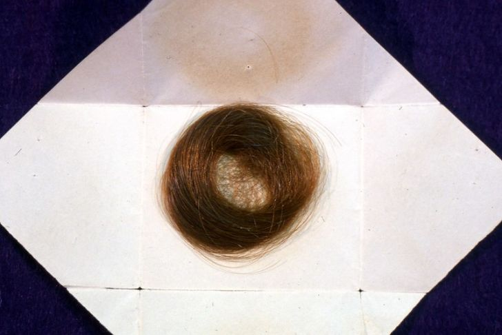 Emily Dickinson facts: A lock of her hair exists at Amherst College.