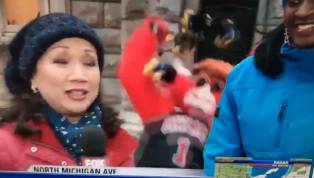 VIDEO: Bulls Mascot Takes Brutal Fall in Ice on Live TV