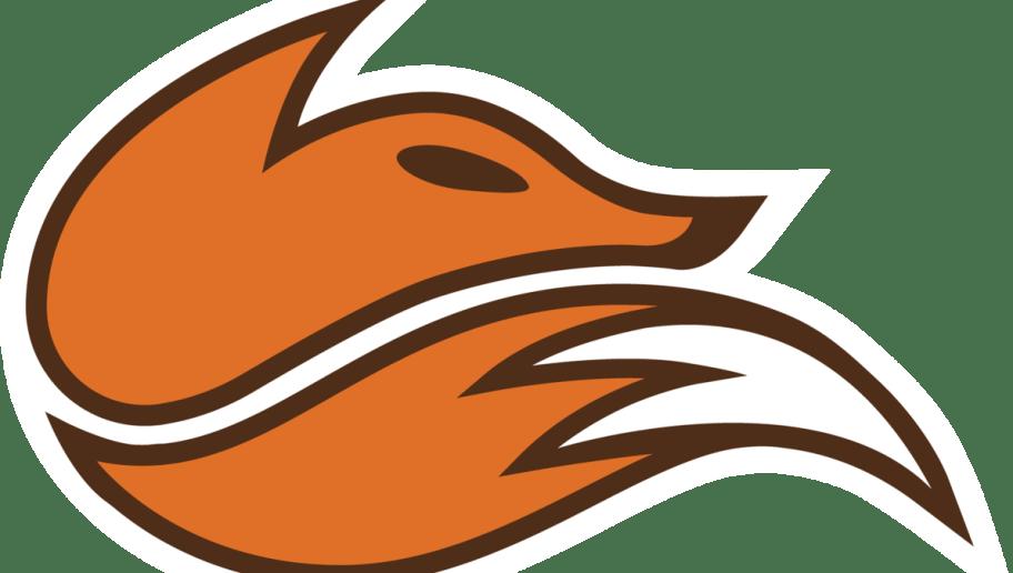 echo fox ile ilgili görsel sonucu