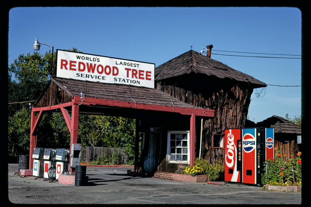 3. REDWOOD TREE SERVICE STATION