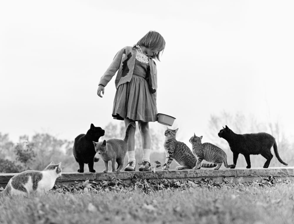 6. Maria and Family Cats, New Jersey, 1962